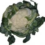 Frutas e verduras 075